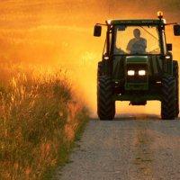 Омская область первая приняла программу развития сельхозкооперации